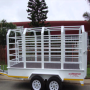 2.6 ton Cattle Trailer